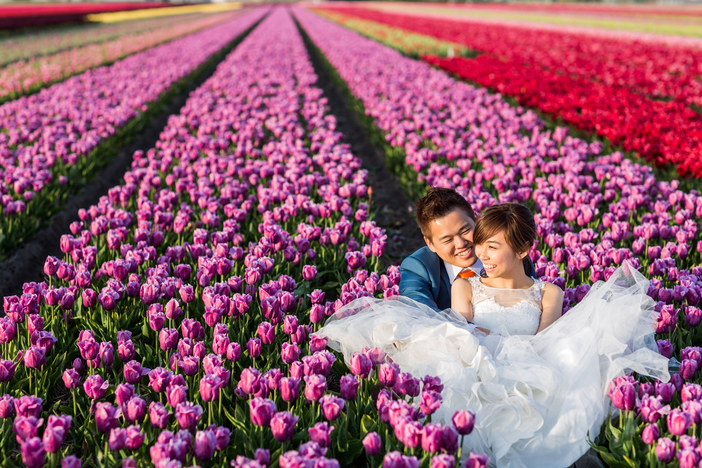 pre wedding photoshoot tulips Keukenhof